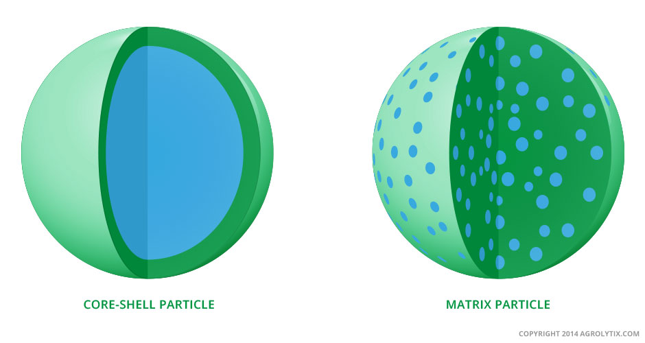 Core Shell Particle - Matrix Particle